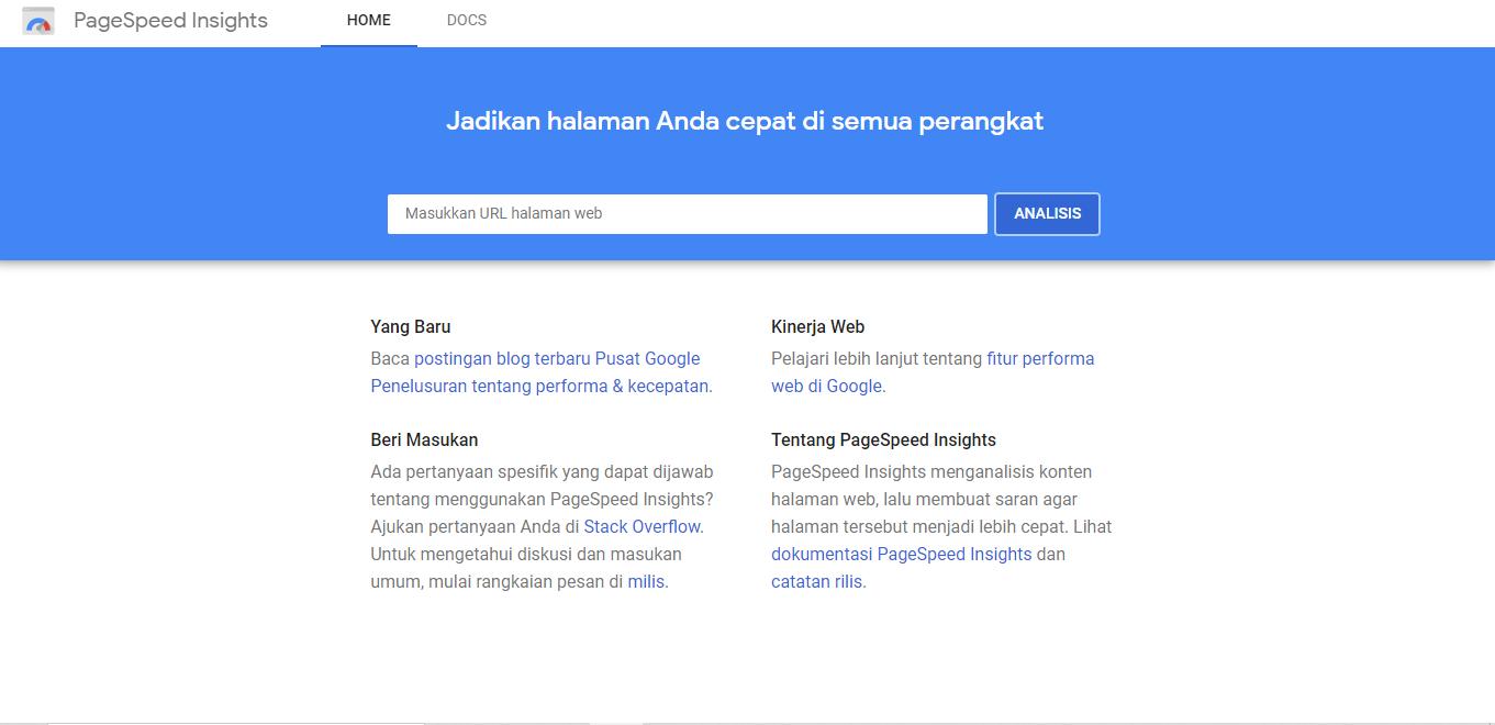 website Google PageSpeed Insight